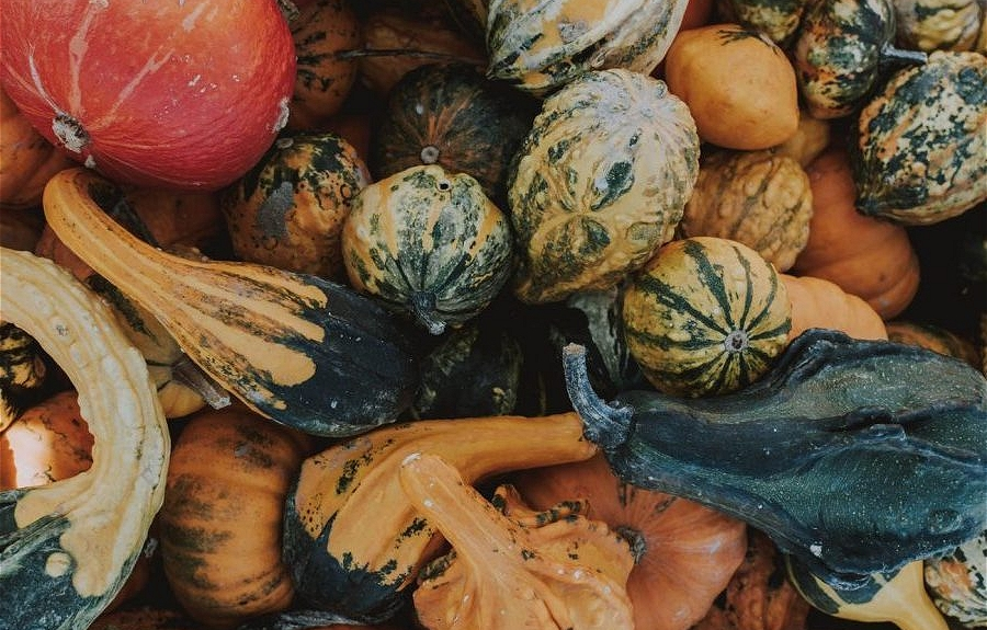 The Art of Seasonal Eating!